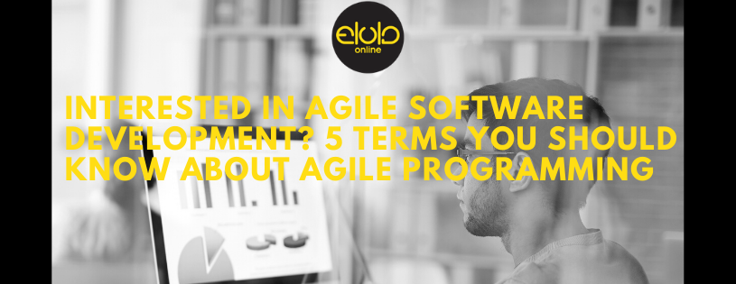 Software Development, Interested in Agile Software Development? 5 Terms You Should Know About Agile Programming, Elula Online